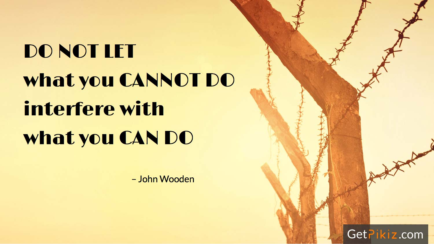 Do not let what you cannot do interfere with what you can do. – John Wooden