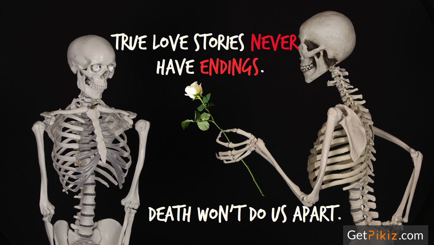 True Love stories never have endings. Death won't do us apart.